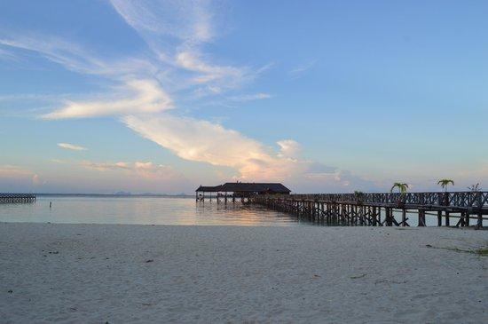 Scuba Junkie Mabul Beach Resort : view from the beach