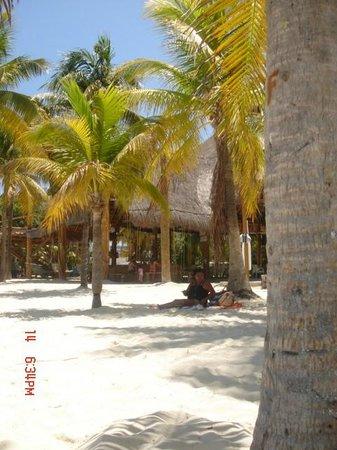Cabanas Maria Del Mar : Playa Norte con veduta al Buho's Bar
