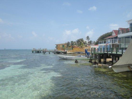 Decameron Los Delfines: vista dal ristorante