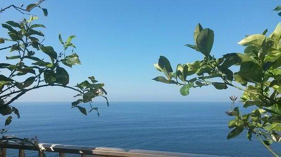 Hotel Villa Bellavista : Vistas desde la terraza del hotel
