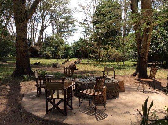 Migunga Tented Camp: jardin
