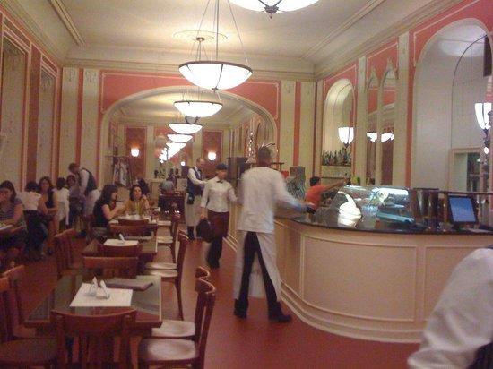 Cafe Louvre: Vue de l'intérieur du Café Louvre Praha.