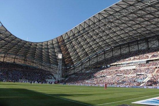 Stade Velodrome: La pelouse et le terrain