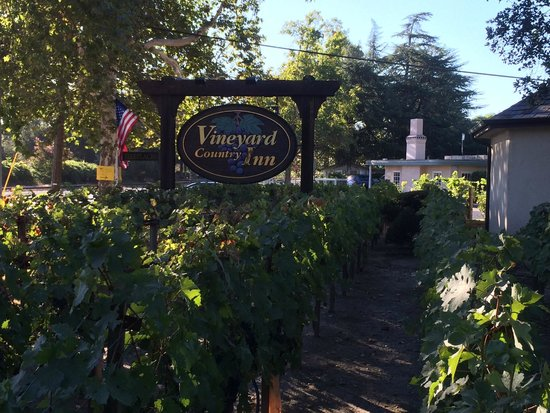 Vineyard Country Inn: The Sign at the Entrance