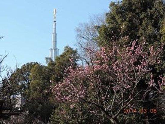 Arisugawanomiya Memorial Park: 有栖川公園と教会