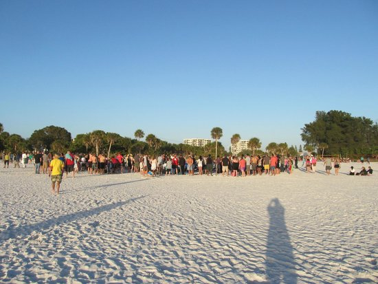 Siesta Beach : view of the beach