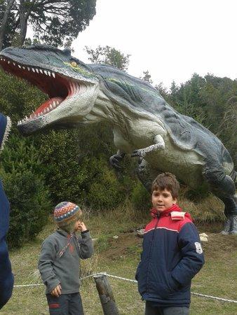 Parque Nahuelito: Impresionante !!