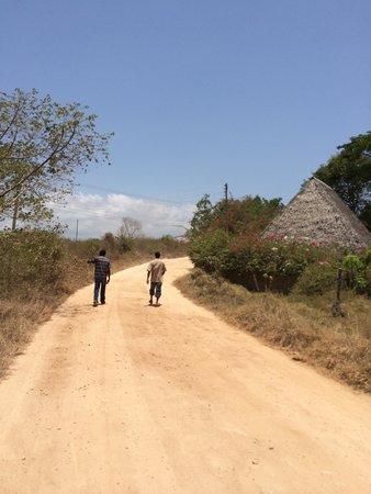 Kinondo Poa : ホテル前の道