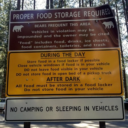 Half Dome Village : An Ounce of Prevention...