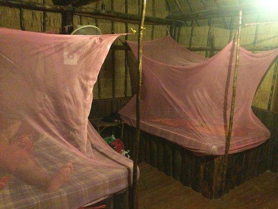 Coco's Bungalow Resort: Mosquito nets