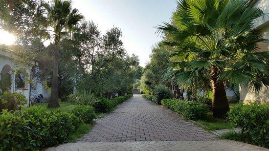 Residence Alba Chiara: Giardini e vialetti sempre curati e puliti