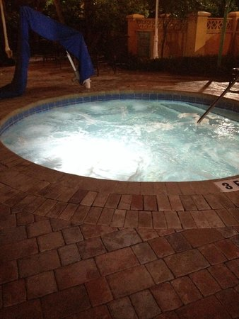 Embassy Suites by Hilton Miami - International Airport : Hot tub in pool area