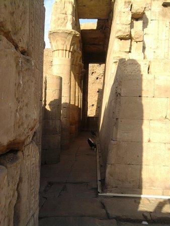 Luxor Temple: interior del templo