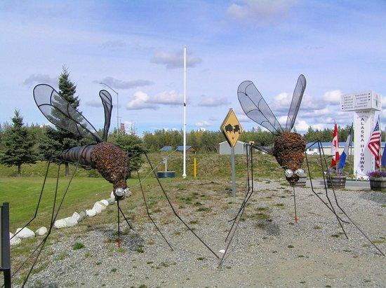 Alaska Highway: promemoria sugli insetti della zona