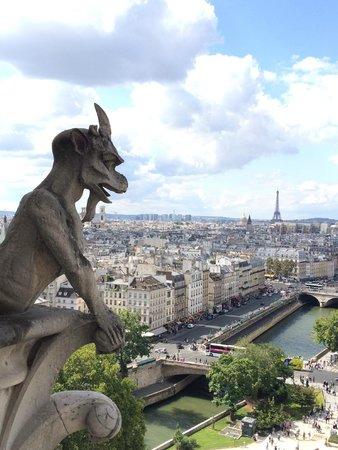 Notre-Dame de Paris: Guards of Notre Dame