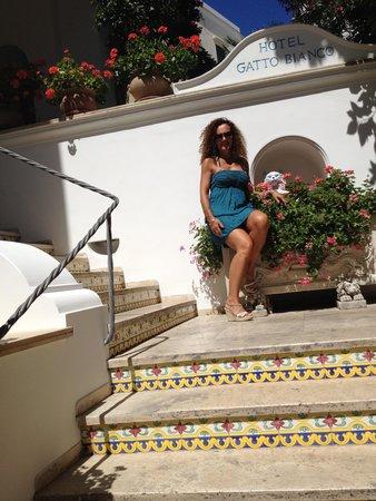 Hotel Gatto Bianco: ingresso principale