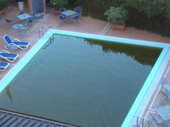 B&B Hotel Pisa : pool filthy