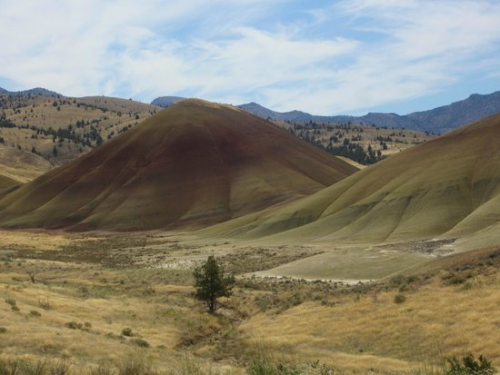 John Day Fossil Beds National Monument: Hills