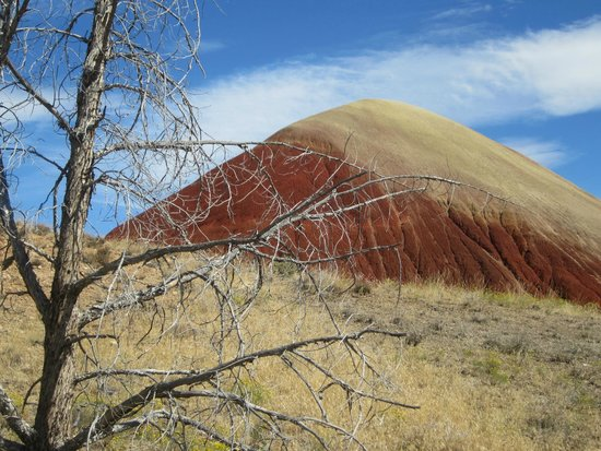 John Day Fossil Beds National Monument: Red earth