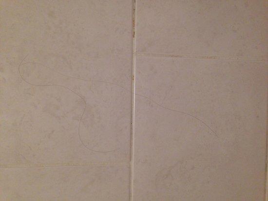 Ramada London South Ruislip: First hair in shower