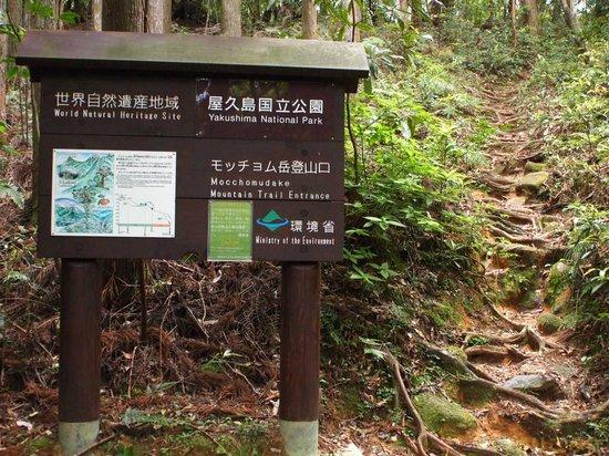 Toroki Falls : 看板