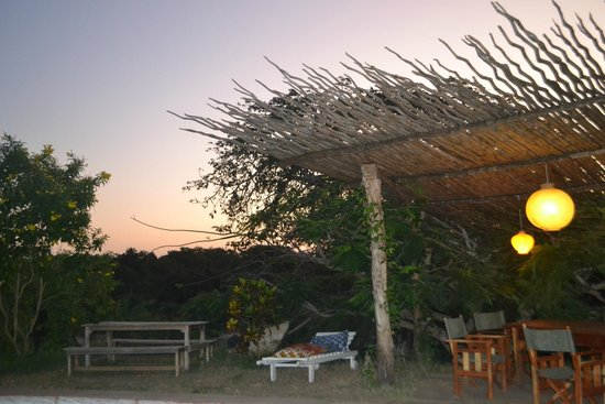 Distant Relatives Ecolodge & Backpackers: The garden