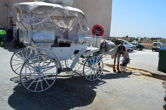 Bab Mansour Gate : Carruajes