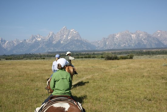 Moose Head Ranch: One of many horse riding trails