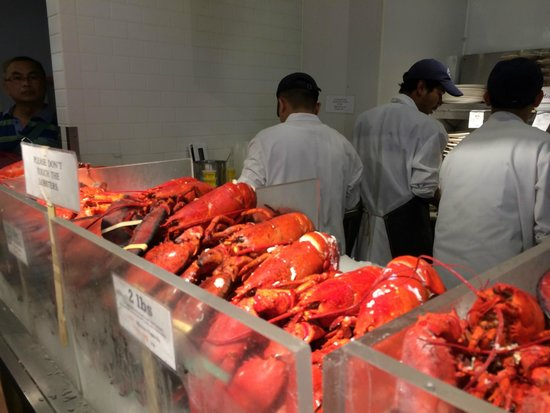 The Lobster Place: Lobsters
