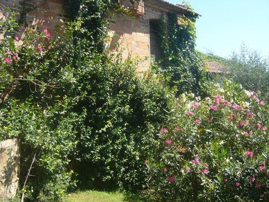 Le Oche Grigie: Jardin