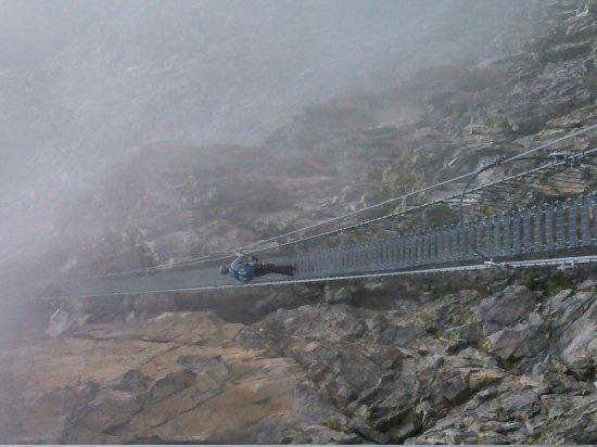 Sentiero dei Fiori - Adamello: uno dei due ponti sospesi