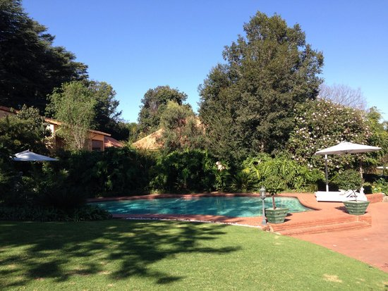 Little Tuscany Boutique Hotel : pool and garden