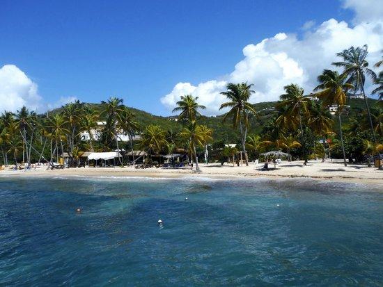 Bolongo Bay Beach Resort: Iggie's Beach Bar & beach