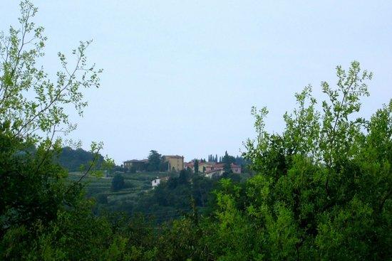 Veronaround - Tryverona: Vineyards of Valpolicella