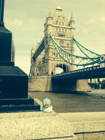 Apex London Wall Hotel: The duck in question, christened Mr D. Crombie