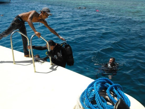 TGI Diving El Gouna: Fine immersione