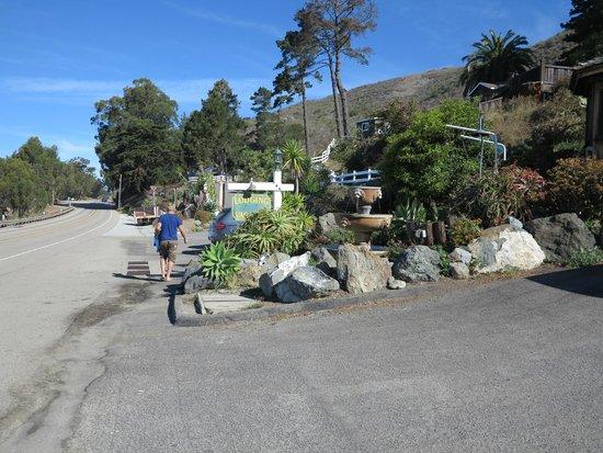 Gorda Springs Resort: The grounds