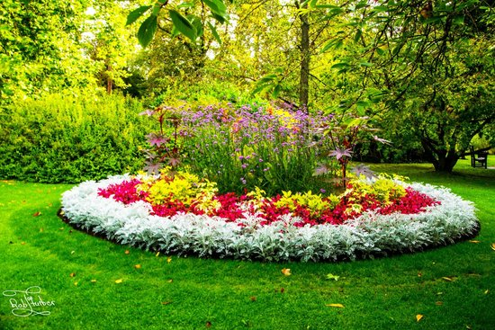 Royal Victoria Park : A flower bed that really caught my imagination in The Botanical Gardens