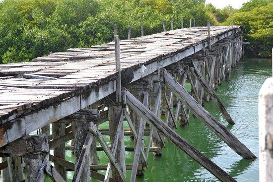 Sian Ka'an Biosphere Reserve: Antiguo camino