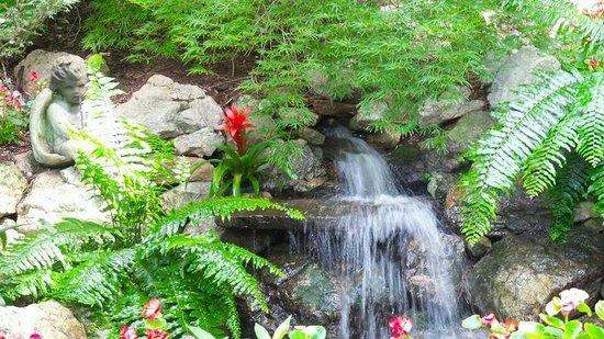 Parrot Mountain & Gardens: Beautiful waterfall in the Parrot Mountain