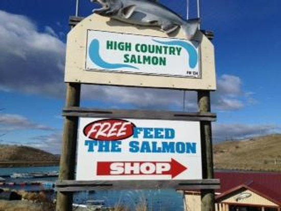 High Country Salmon: Sign