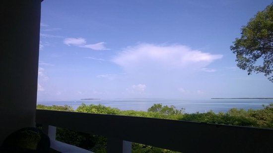 Hilton Key Largo Resort : View from Treetops restaurant