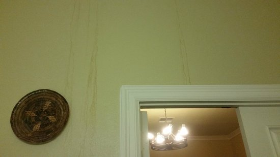 Crescent Quarters Inn: Gross stains on the wall