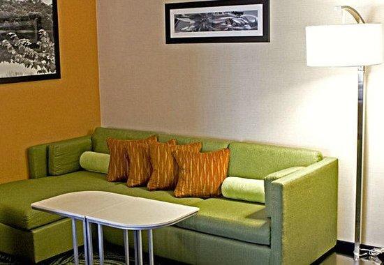 SpringHill Suites Statesboro University Area: comfortable sofa area