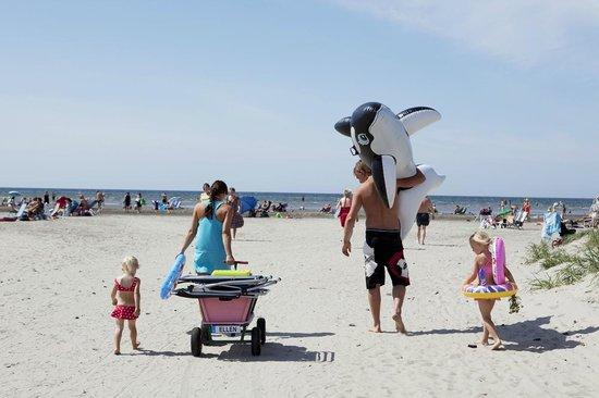 Bjorkangs Havsbad: Strand