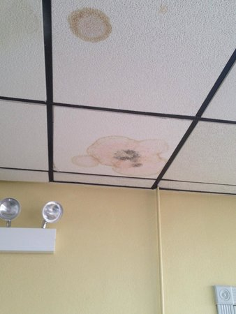 Days Inn Virginia Beach Oceanfront: Black Mold in the center of the water stain in the ceiling over the breakfast area.