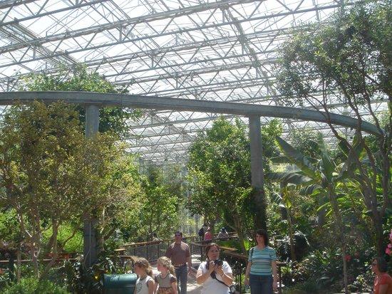 Our Visit To This Wonderful Park Picture Of Gilroy Gardens Family Theme Park Gilroy Tripadvisor
