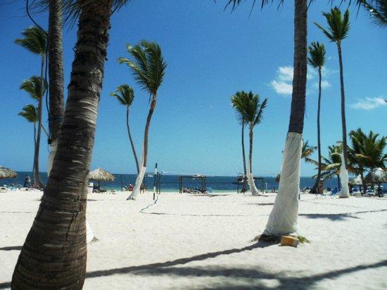 Be Live Collection Punta Cana: пляж