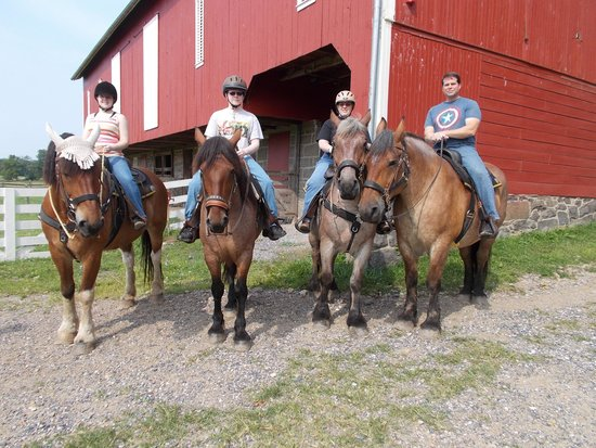 Hickory Hollow Horse Farm : The tour group took time to take a family picture!