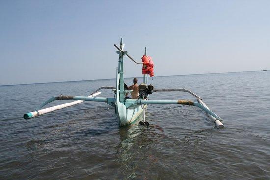 Cleopatra Beach Bungalows : Voor Cleopatra: net opgehaald door local vissers
